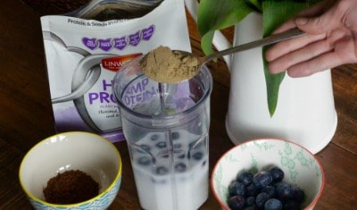 Cocoa Blueberry Smoothie