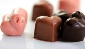 Vegan Protein Chocolates