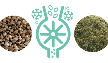 Benefits of Milled Hemp Seeds